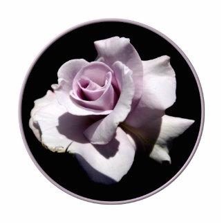 Purple - Violet Rose Photo Cutout