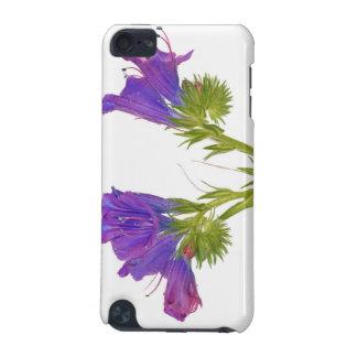 Purple vipers bugloss (echium plantagineum) iPod touch (5th generation) case
