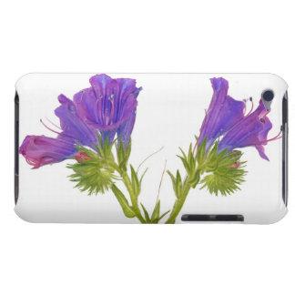 Purple vipers bugloss (echium plantagineum) iPod touch Case-Mate case