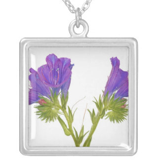 Purple vipers bugloss (echium plantagineum) silver plated necklace