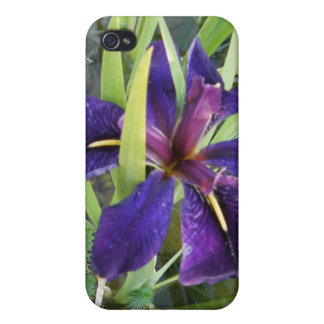Purple Water Iris Cover For iPhone 4