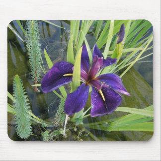 Purple Water Iris Mousepad