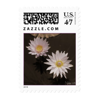 Purple Water Lilies Postage Stamp