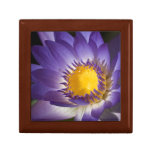 Purple Water Lilly Jewelry Box