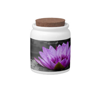 Purple Water Lily 002 Black and White Background Candy Jars