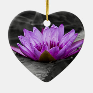 Purple Water Lily 002 Black and White Background Ceramic Ornament