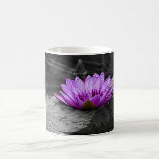 Purple Water Lily 002 Black and White Background Classic White Coffee Mug
