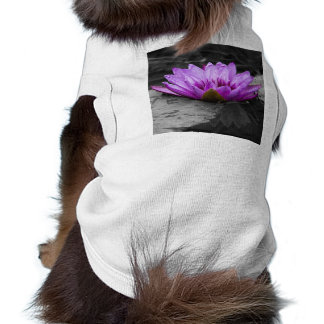 Purple Water Lily 002 Black and White Background Dog Tee Shirt