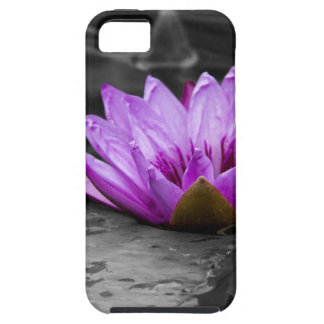 Purple Water Lily 002 Black and White Background iPhone SE/5/5s Case
