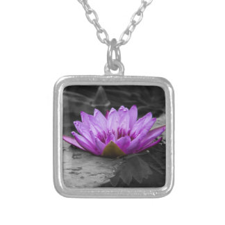 Purple Water Lily 002 Black and White Background Jewelry