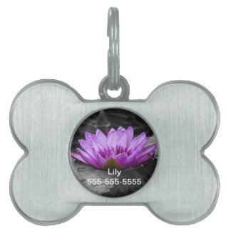 Purple Water Lily 002 Black and White Background Pet Name Tag