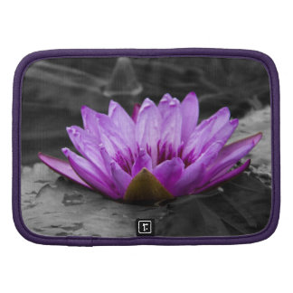 Purple Water Lily 002 Black and White Background Folio Planners