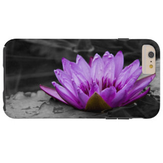 Purple Water Lily 002 Black and White Background Tough iPhone 6 Plus Case