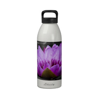 Purple Water Lily 002 Black and White Background Reusable Water Bottles