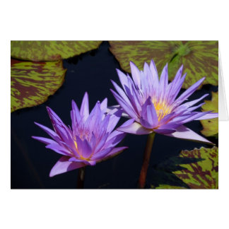 Purple Water Lily Duet Card