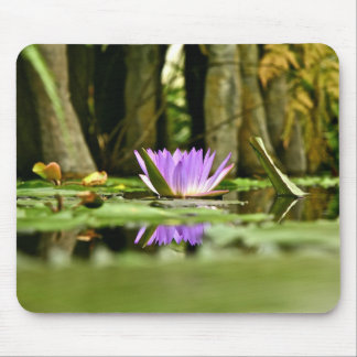 PURPLE WATER LILY REFLECTING IN A POND MOUSE PAD