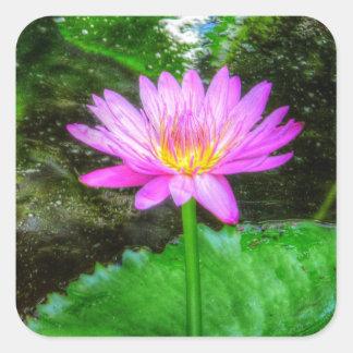 Purple Water Lily Sticker