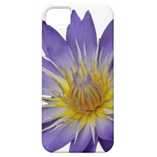 Purple Water Lily (with white background) Case
