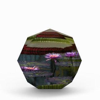 Purple Waterlilies Lotus Acrylic Award