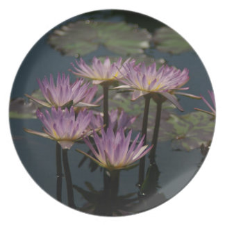 Purple Waterlilies Lotus Melamine Plate