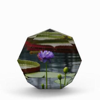 Purple Waterlily Acrylic Award