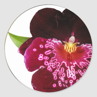 Purple Wedding Flowers Envelope Seals Classic Round Sticker