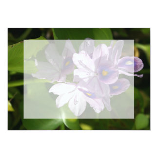purple white flowers with eyes card