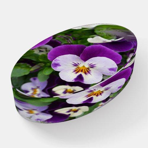 Purple white pansies paperweight