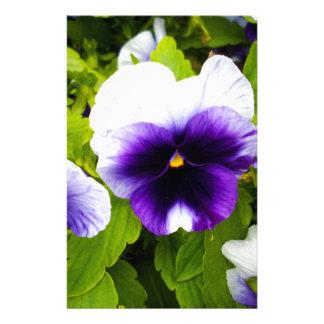 Purple_White_Pansies,_ Stationery