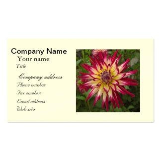 Purple white yellow Dahlia flower Business Card