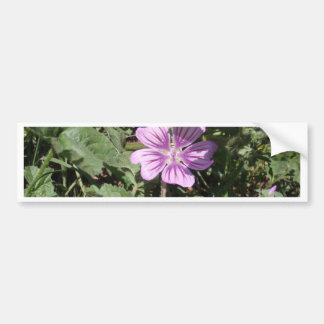 Purple Wild Flower Bumper Sticker