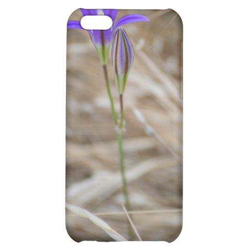 Purple Wild FlowerElegant Brodiaea Case For iPhone 5C