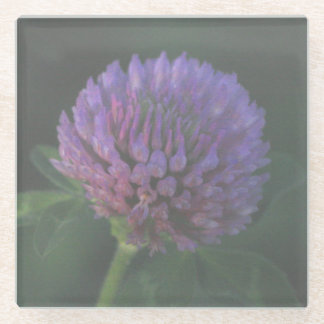 Purple Wildflower Glass Coaster
