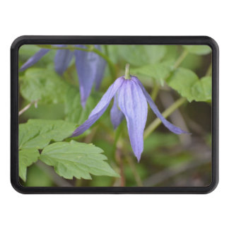 Purple Wildflower Hitch Covers
