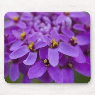 Purple Wildflower Mouse Pad