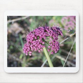 Purple Wildflower Mouse Pad