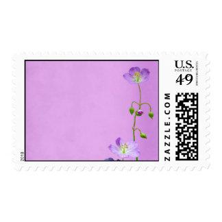 Purple Wildflower on Purple Postage Stamp