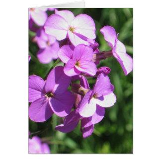 Purple Wildflowers Blank Card