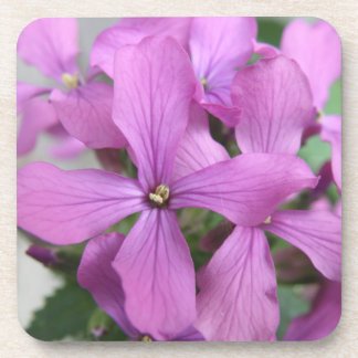Purple Wildflowers Cork Coaster