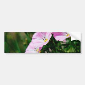 Purple Wildflowers In A Summer Sun Photograph Bumper Sticker