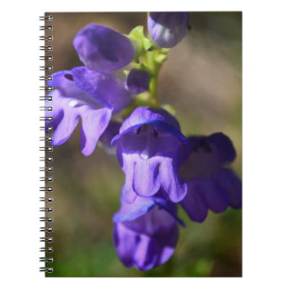 Purple Wildflowers in the Mountains Spiral Notebook