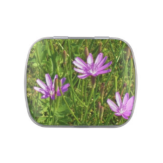 Purple wildflowers Texas field Jelly Belly Candy Tins