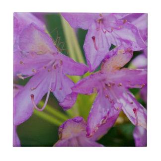 Purple Wildflowers Ceramic Tile
