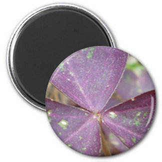 Purple Wings 2 Inch Round Magnet