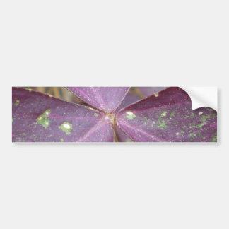 Purple Wings Bumper Sticker