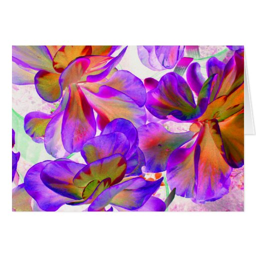purple yellow colorized succulent card