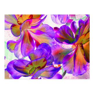 purple yellow colorized succulent postcard