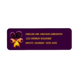 Purple Yellow Floral Pansy Flower