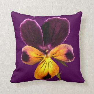Purple Yellow Johnny Jump Up Viola Pillow