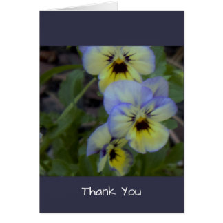 Purple Yellow Pansies Card